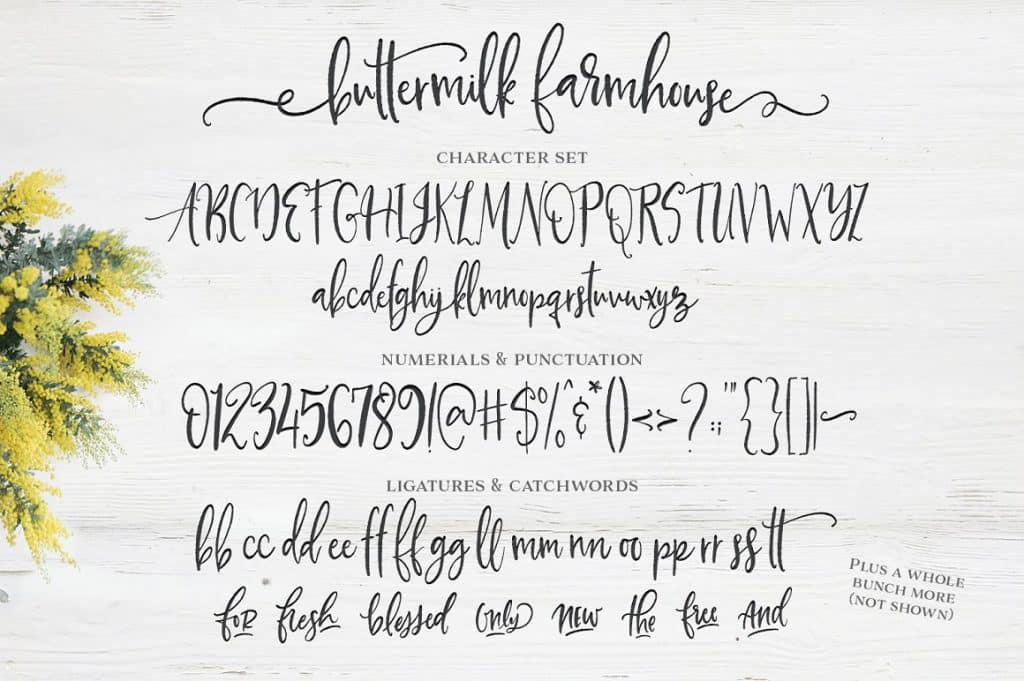 Buttermilk Farmhouse Typeface full